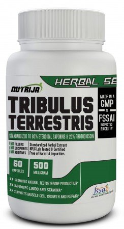 Buy Tribulus Extract Capsules Supplement In India
