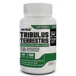Buy Tribulus Extract Capsules Supplement In India