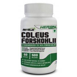 Coleus Forskohlii Extract Capsules